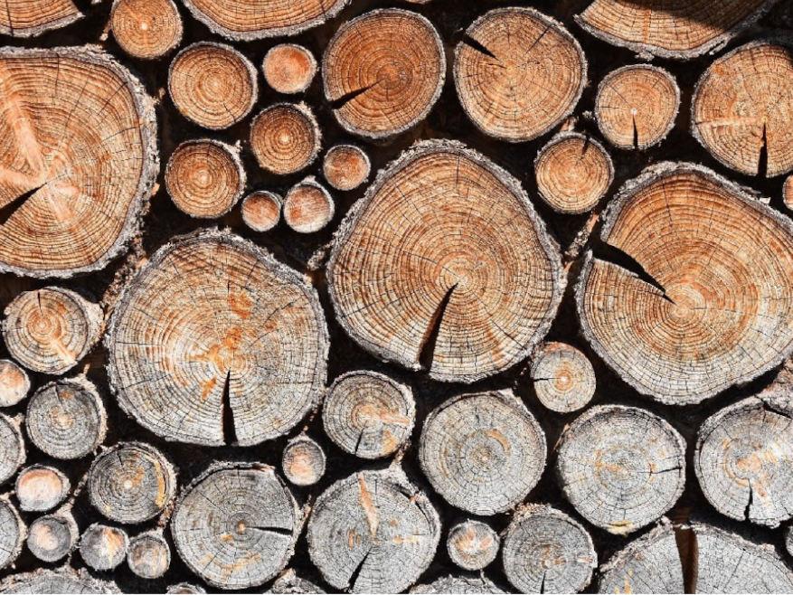 Le bois de chauffage BOIS DE CHAUFFAGE ECOLOGIQUE