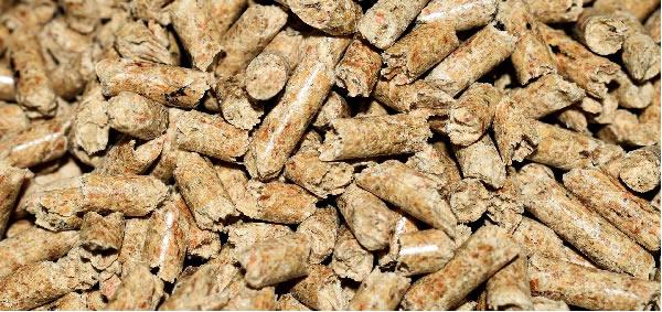 Granulés-pellets de bois biologique