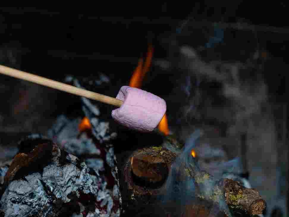 Faire plaisir à vos enfants : les shamallows grillés ! BOIS DE CHAUFFAGE ECOLOGIQUE